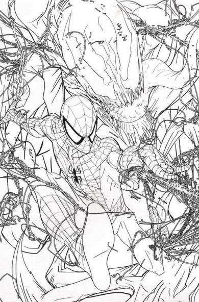 09_017_spideyColorline